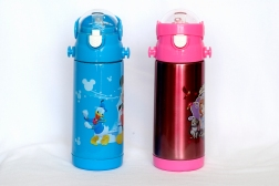 Water bottle with Sipper
